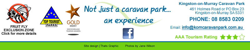 contact Kingston on Murray Caravan Park
